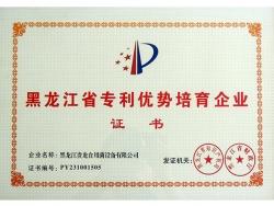 黑龙江省专利优势培育企业